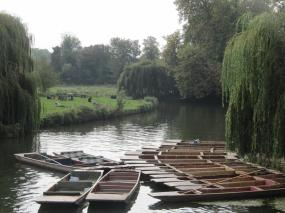 Cambridge (15)