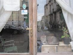 Napoli (13)