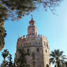 Sevilla, Torre del oro.