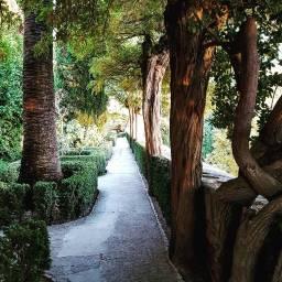 Granada, Alhambra.