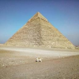 Giza, Chefren pyramid.